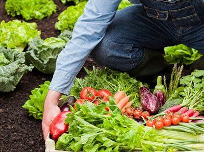 ¿Quién tiene miedo de la agricultura ecológica?